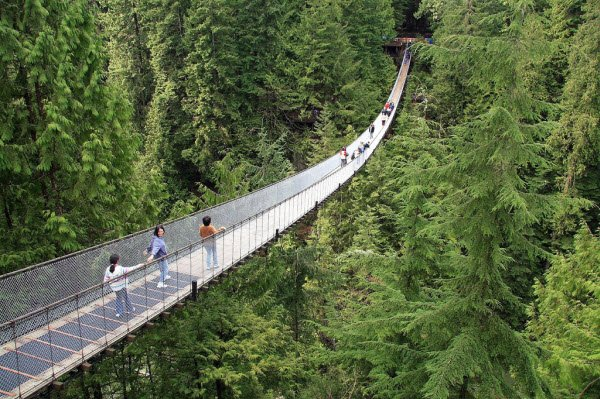 Capilano Suspension Bridge (Puente colgante de Capilano)